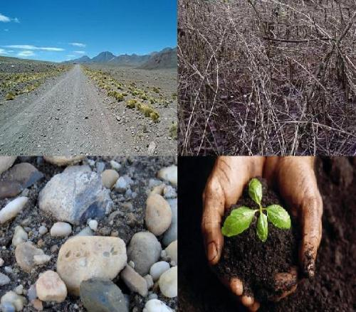 The parable of the four soils revisited for 4 different types of soil