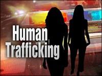 Human Trafficking Media