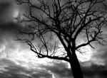 Is Suicide the Unforgivable Sin?