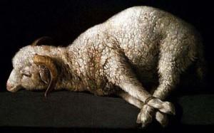 sacrifice for sin