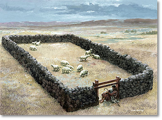 Who are the Sheep not of this Sheepfold?