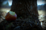 Was Adam and Eve's sin really about eating a piece of forbidden fruit?