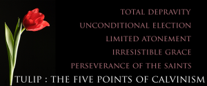 Calvinism 5 point TULIP
