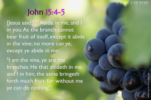 John 15:4-5 vine and branches