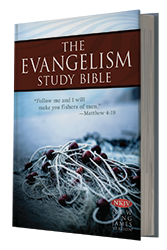 What is your experience with study bibles?