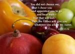 John 15:16 – Did Jesus choose who would be saved?