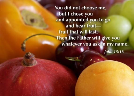 chosen John 15:16