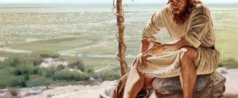 Jonah 4:8 – God is a Divine Enabler