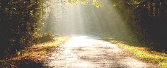 walk in the light 1 John 1:6-7